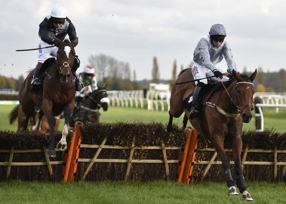 Dusky Legend (right) is amongst the potential stars on show at Newbury on Saturday
